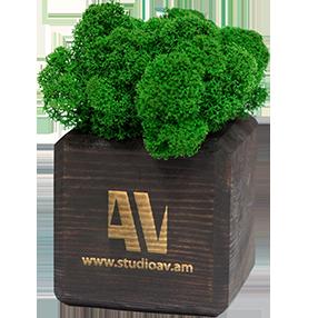 Էկո նվեր Moss Box
